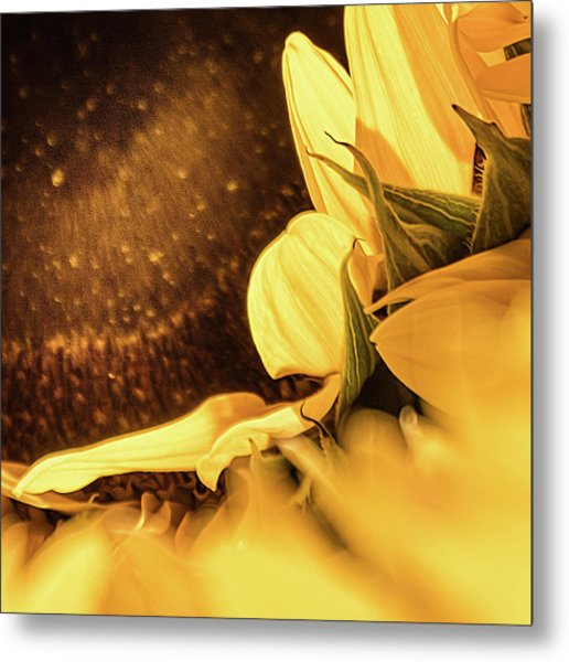Gold Dust 2 - Metal Print