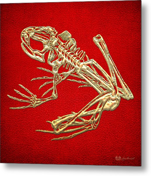 Gold Frog Skeleton On Red Leather Metal Print
