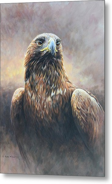 Golden Eagle Portrait Metal Print