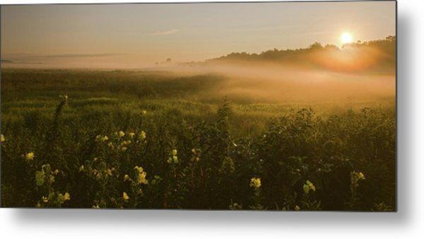 Golden Fog Sunrise At The Refuge Metal Print