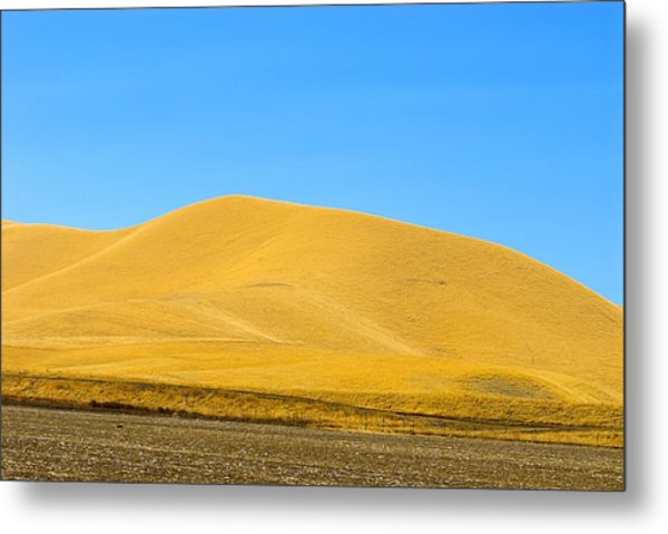 Golden Hill Metal Print