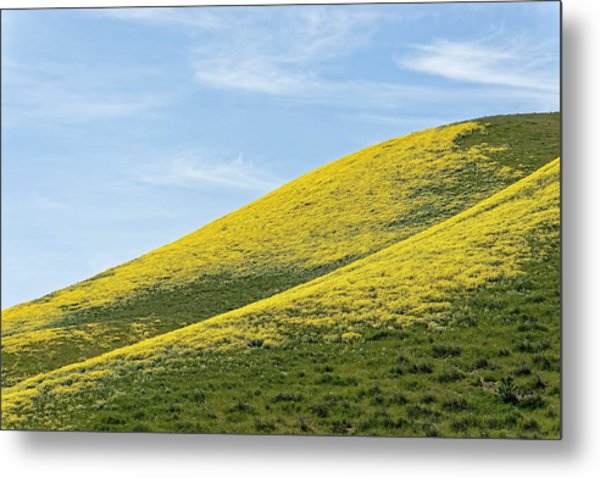 Golden Hills Of California Metal Print