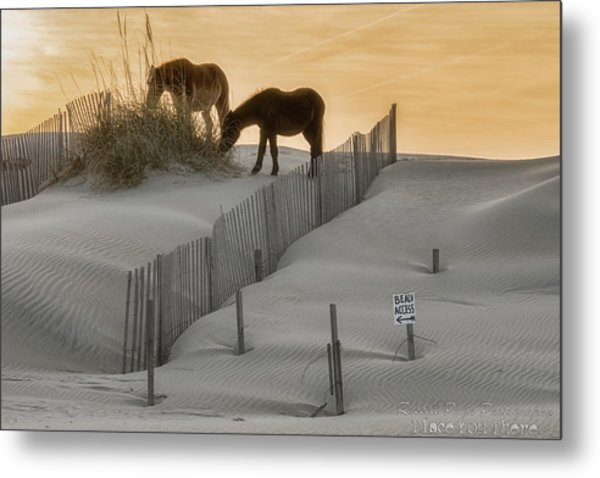 Golden Horses Metal Print