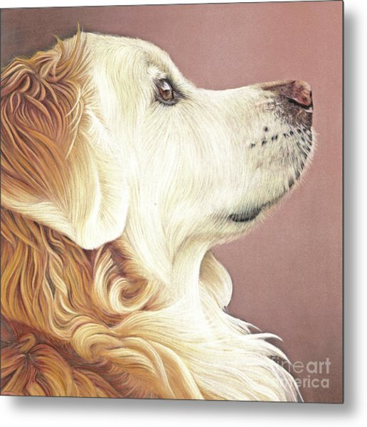 Metal Print featuring the painting Golden Oldie by Donna Mulley