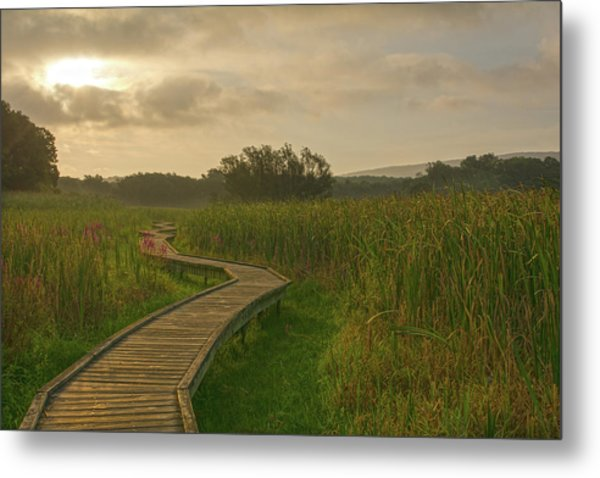 Golden Pathway To A Foggy Sun Metal Print