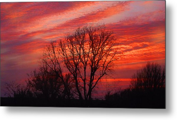 Golden Pink Sunset With Trees Metal Print