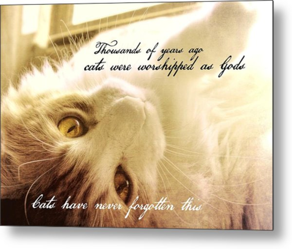Golden Quote Metal Print by JAMART Photography