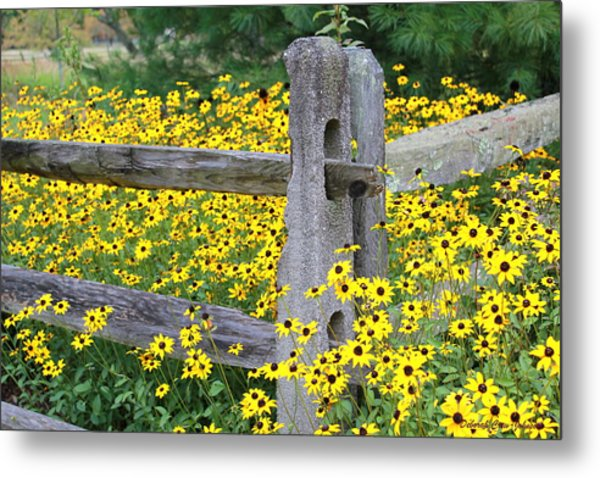Golden-rod  Crowd Out Metal Print
