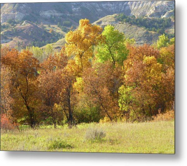 Golden September Metal Print