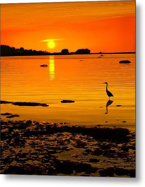 Golden Sunset At The Bay Metal Print