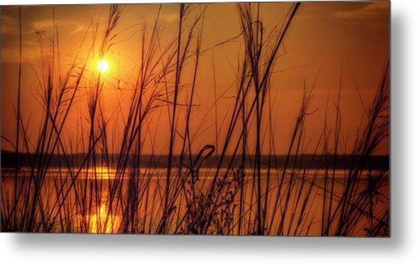 Golden Sunset At The Lake Metal Print
