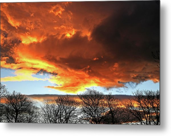 Golden Sunset With Filigree Trees Metal Print