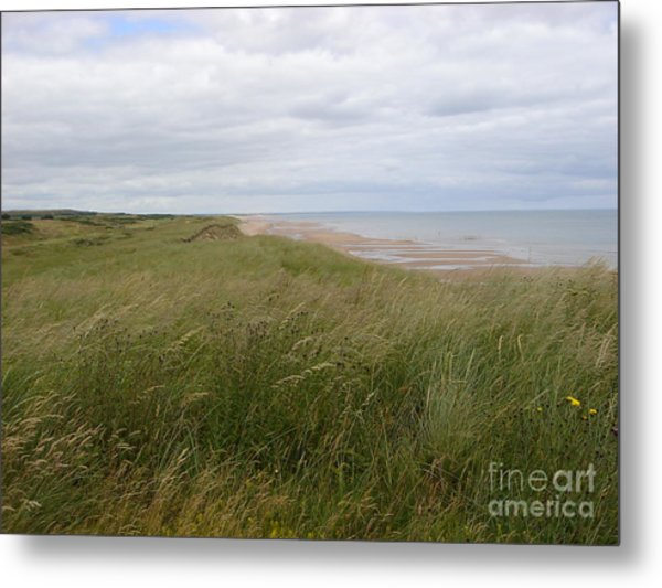 Golf In Scotland Metal Print
