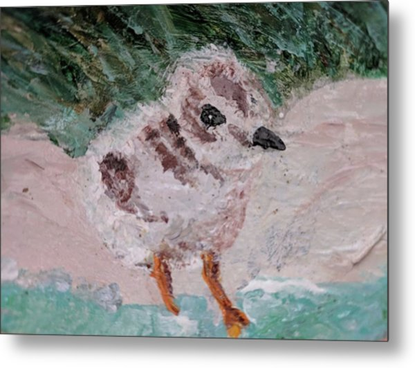 Good Harbor Piping Plover Chick #1 Metal Print