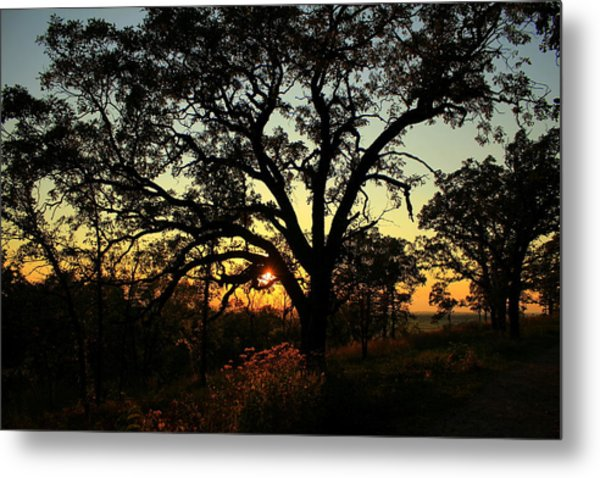 Good Night Tree Metal Print