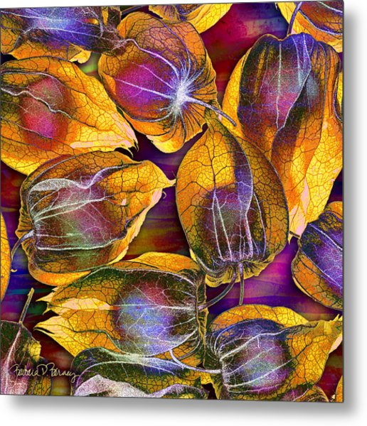Goosed Berry Pods Metal Print