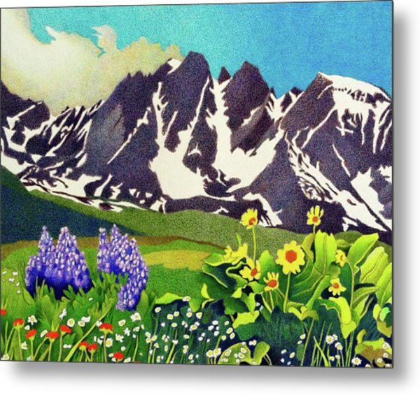 Gore Range Wildflowers Metal Print