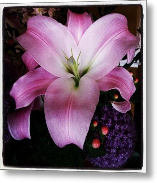 Metal Print featuring the photograph Gorgeous Flowers. Real. I Think They by Mr Photojimsf