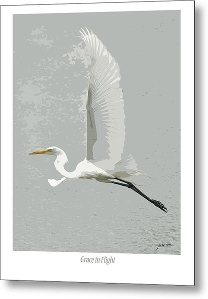 Grace In Flight Metal Print