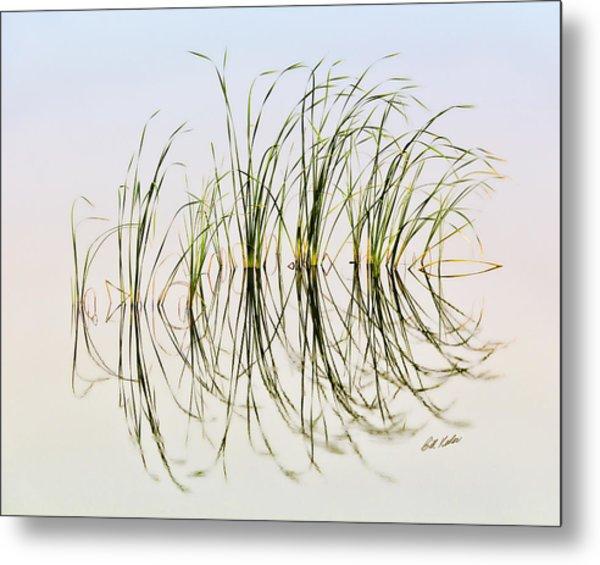 Graceful Grass Metal Print