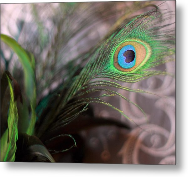 Graceful Peacock Feather Metal Print