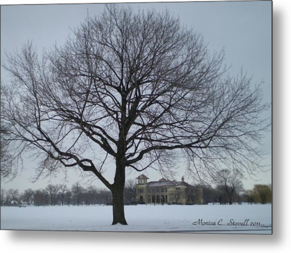 Graceful Tree And Belle Isle Eating Casino In Distance Metal Print