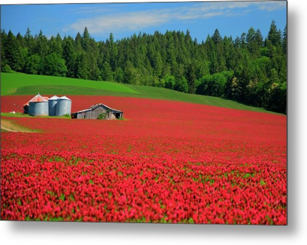 Grain Bins Barn Red Clover Metal Print