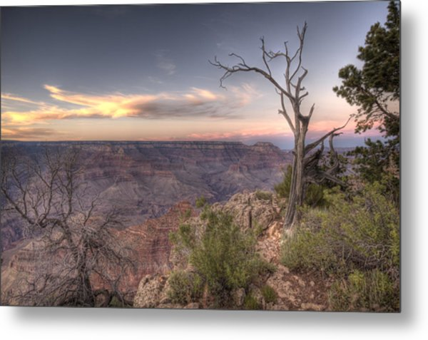 Grand Canyon 991 Metal Print