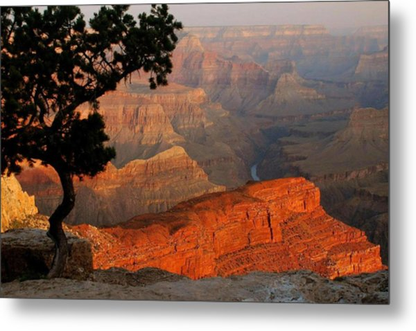 Grand Canyon At Sunrise Metal Print by Stephen  Vecchiotti
