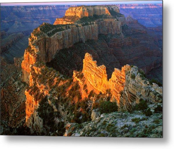 Grand Canyon North Rim Metal Print by Johan Elzenga