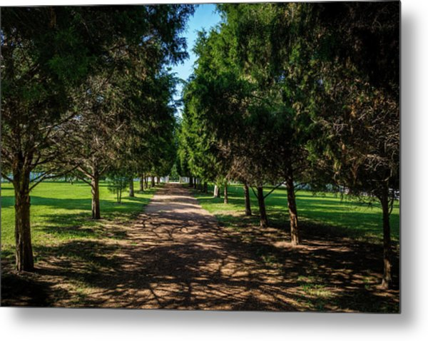 Metal Print featuring the photograph Grand Pathway - The Hermitage by James L Bartlett
