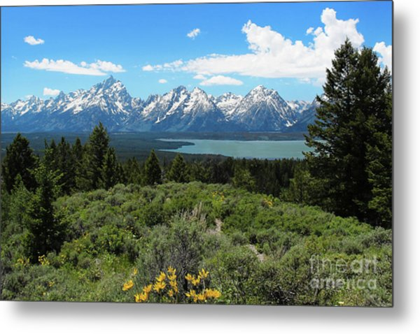 Metal Print featuring the photograph Grand Tetons by Jemmy Archer