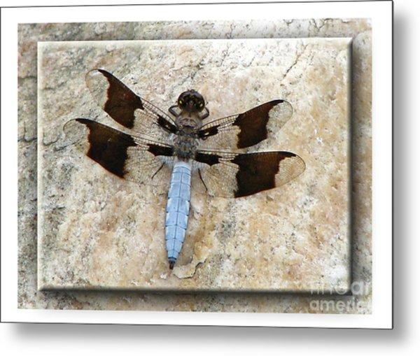 Granite Dragon Metal Print