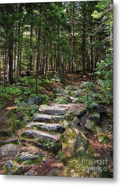 Granite Steps, Camden Hills State Park, Camden, Maine -43933 Metal Print