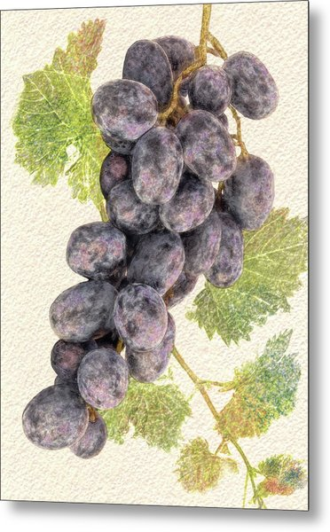 Luscious Grapes Metal Print