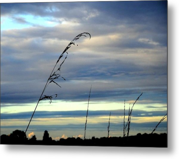 Grass Against Abstract Sky Metal Print