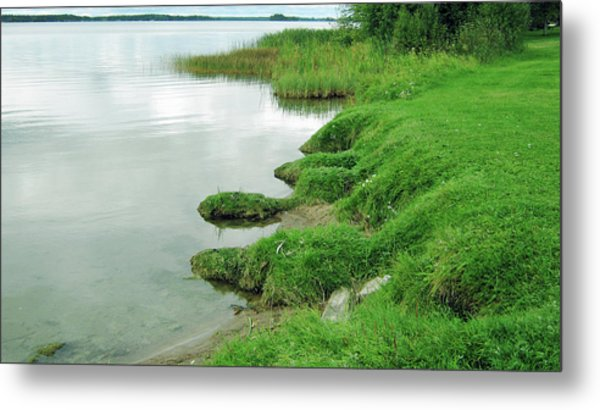 Grass And Water Metal Print