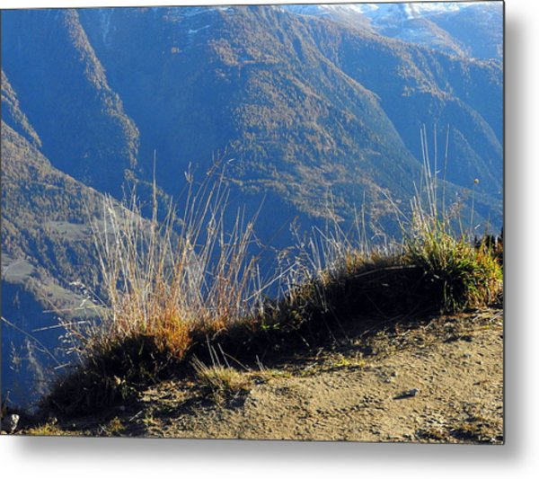 Grass In The Foreground, The Main Valley Of The Swiss Canton Of Valais In The Background Metal Print