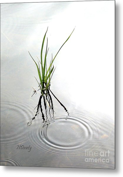 Ripples And Reflections Metal Print