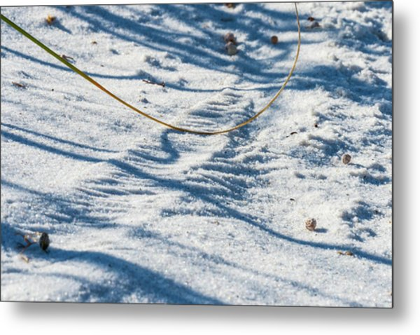 Grass Scapes In The Sand Metal Print