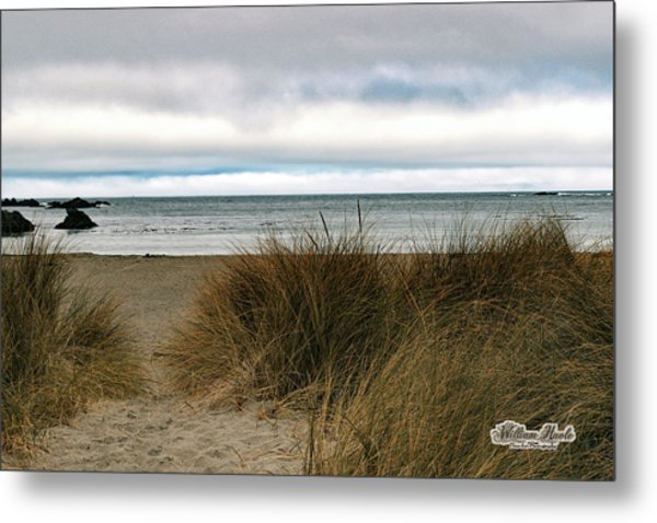Metal Print featuring the photograph Grassy Beach by William Havle