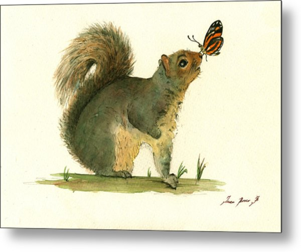 Gray Squirrel Butterfly Metal Print