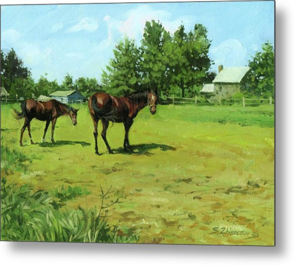 Grazing Horses Metal Print