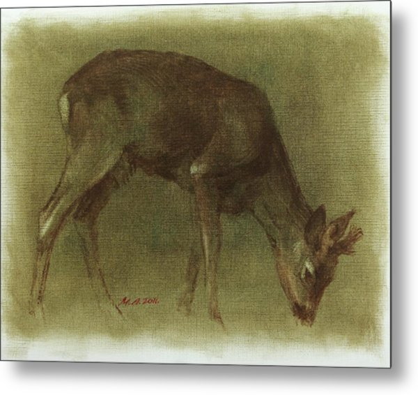 Grazing Roe Deer Oil Painting Metal Print