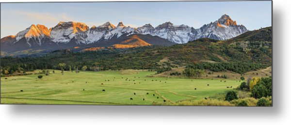 Grazing Under Sneffels Metal Print
