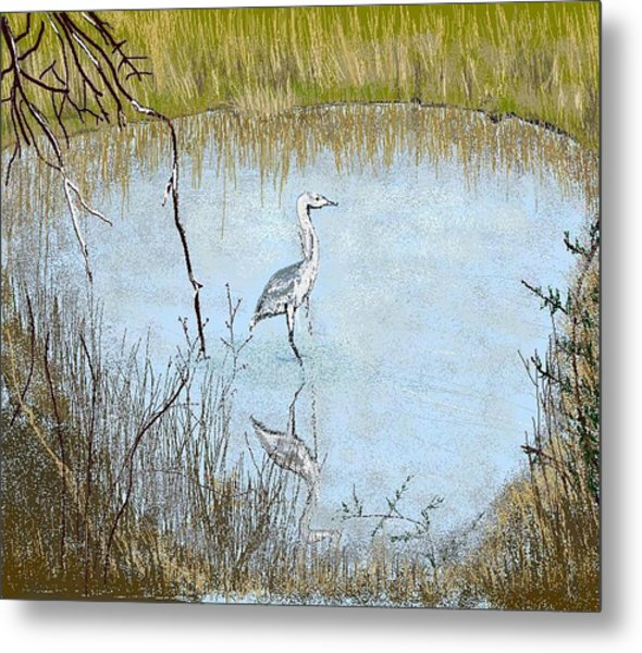 Great Blue Metal Print by Carole Boyd