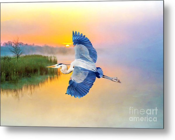 Great Blue Heron At Sunset Metal Print