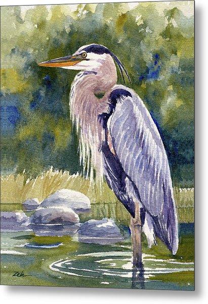 Great Blue Heron In A Stream Metal Print