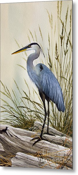 Great Blue Heron Shore Metal Print