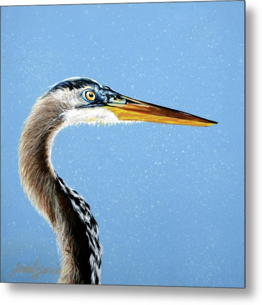 Great Blue Walter Metal Print